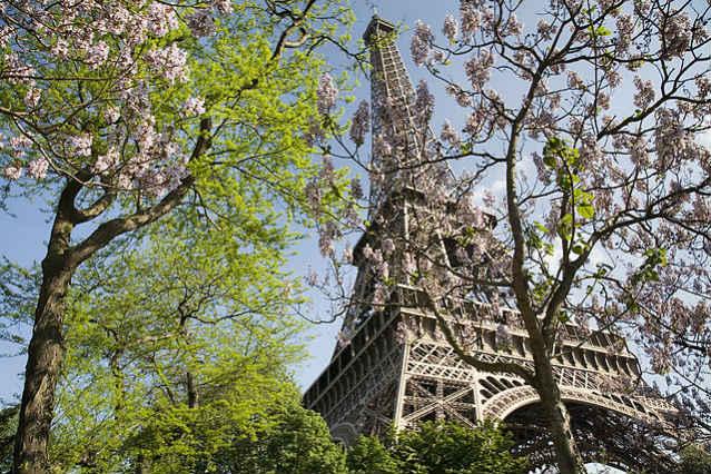 Estudar em Paris | A Torre Eiffel, Paris na primavera | Foto: Jorge Royan via Wikimedia Commons