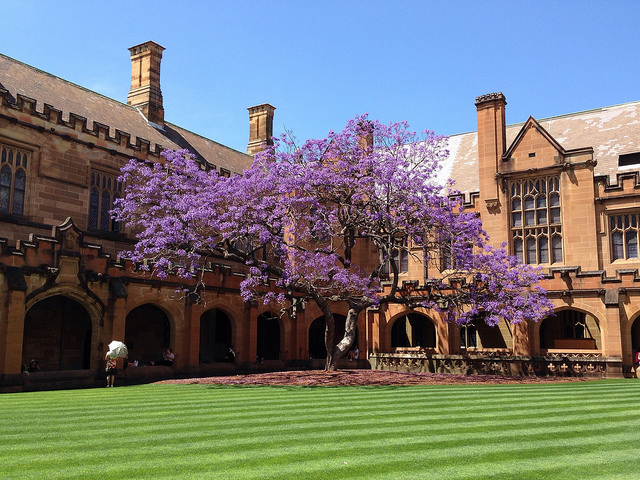 University of Sydney | Foto: James Dennes, via Flickr