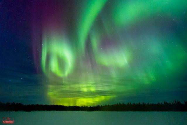 Estudar na Suécia | Aurora Boreal | Foto: Tim De Decker, via Flickr