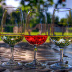 Mestrado em Turismo do Vinho | Foto: Pixabay.com, CCO license