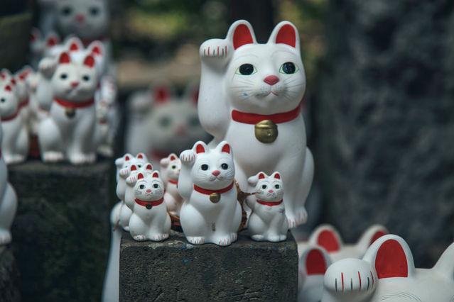 Gotokuji Maneki Neko, Templo do Gato da Boa Sorte, Tóquio | Foto: John Gillespie, via Flickr