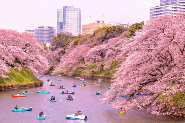 Kitanomaru Park, Tóquio | Foto: Yoshhikazu Takada, via Flickr