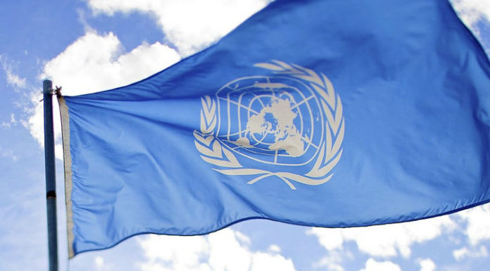 Programa Jovens Profissionais da ONU | Foto: Global Panorama, via Flickr