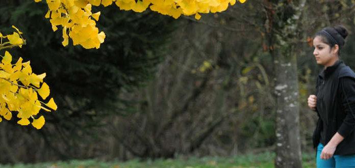 Estudar no exterior   Foto: University of the Fraser Valley, via Flickr
