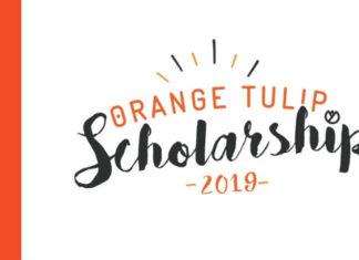 Bolsas para estudar na Holanda - Orange Tulip Scholarships   Crédito: Divulgação