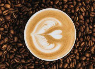 Mestrado em Café   Fundação Ernesto Illy   Foto: Nathan Dumlao, via Unsplash