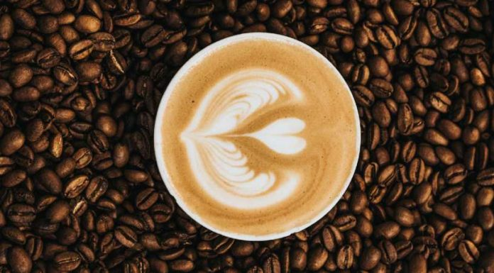 Mestrado em Café | Fundação Ernesto Illy | Foto: Nathan Dumlao, via Unsplash